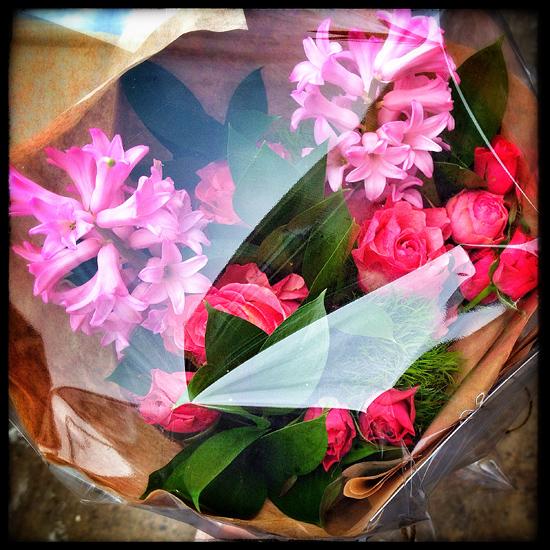 loveOttawa_VintageFloral_floral